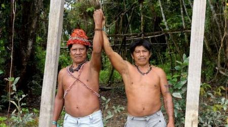 Brasilien – Für den Erhalt des Amazonas